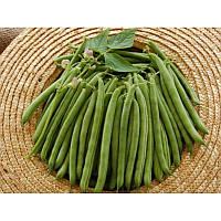 Семена фасоли спаржевой Бурмен 0,05кг Libra Seeds (Erste Zaden)