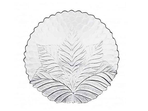 Набор тарелок стекло Pasabahce Sultana 240 мм упаковка 6 шт (10288), фото 2