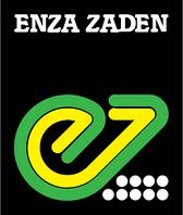 Салат Кристабель Enza Zaden 5000 семян