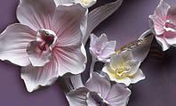 Фотообои 3D цветы разные текстуры , индивидуальный размер