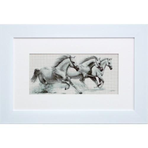 Набор для вышивания нитками Luca-S Животные Птицы Белые лошади