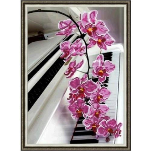 Орхідея на роялі