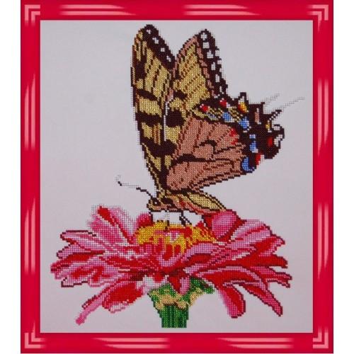 Вышивка бисером, Канва схема цветы натюрморт Бабочка на цветке -1