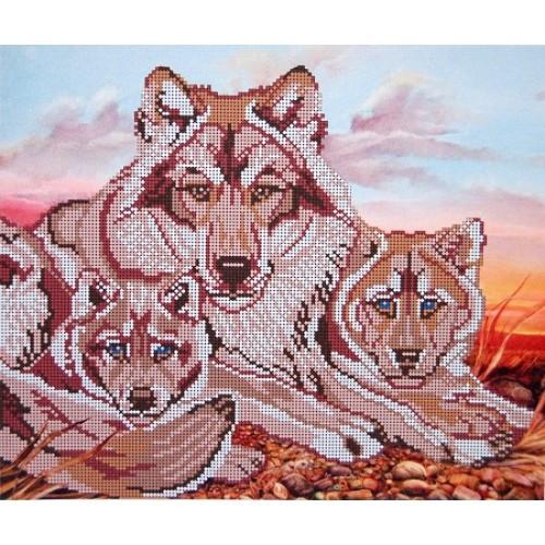 Вышивка схемы бисером, Канва Волки животные Голубые глаза