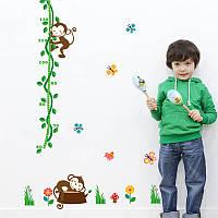 """Интерьерная наклейка в детскую, ростомер """"Обезьянки на дереве"""" размер 66*155 см."""