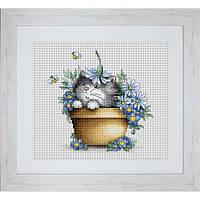 Набор для вышивания нитками Luca-S Животные Птицы Котенок в цветах