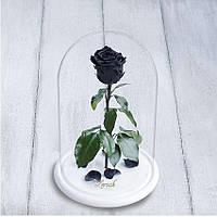 Стабилизированная роза в колбе Lerosh - Standart 33 см, Черная на белой подставке - 138925