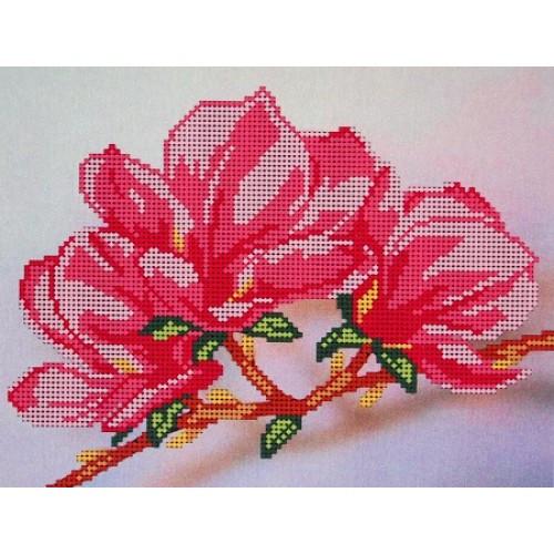 Вышивка абрикос бисером,Канва цветы схемы натюрморт Цвет магнолии