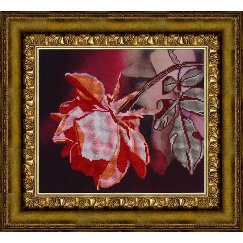 Вышивка бисером, Канва схема цветы натюрморт Коралловая роза