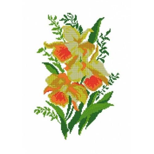 Нарциси