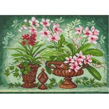 Квіти в горщиках