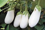Кароліна F1 10 шт насіння баклажан Semo Чехія, фото 2