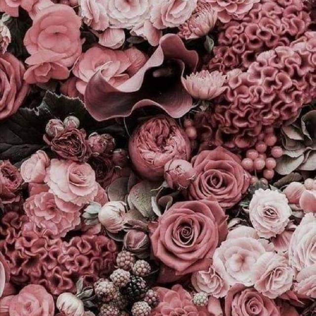 купить ткань футер холодная роза в нашем магазине