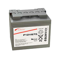 Аккумуляторная батарея Sprinter P12V875