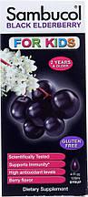 Сироп из черной бузины, Sambucol, Black Elderberry Syrup, For Kids, Berry Flavor, 4 fl oz (120 ml)