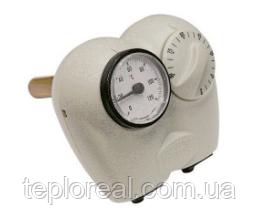 Занурювальний термостат з термометром Arthermo Multi402