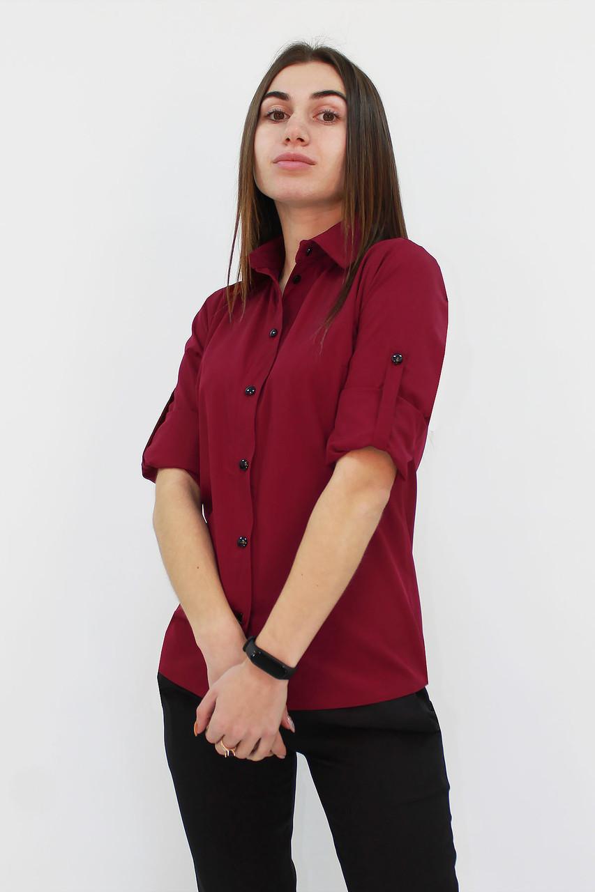 S, M, L / Класична жіноча блузка Ivory, марсала