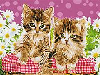 Алмазная живопись Два котика, полная, стразы круглые
