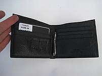 Мужское кожаное портмоне VERITY V138-10 black кожаное портмоне и кожаные кошельки оптом, фото 4