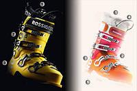 Чем отличаются женские горнолыжные ботинки от мужских?