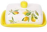 Масленка керамическая 17см Сочные лимоны, фото 2