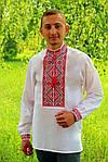 """Вышиванка мужская """"Федор"""" (поплин), 37, фото 2"""