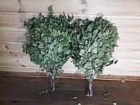 Веник для бани и сауны (березовый)