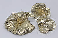 """Сушеный натуральный декор """"Гриб"""", светлое золото, фото 1"""