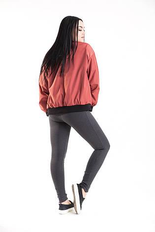 Бомбер, куртка, ветровка унисекс  на молнии высокого качества брендовая ENVYME, Украина(ARBER), фото 2
