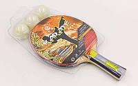 Набор для настольного тенниса 1 ракетка, 3 мяча GIANT DRAGON KARATE P40+4 (древесина)