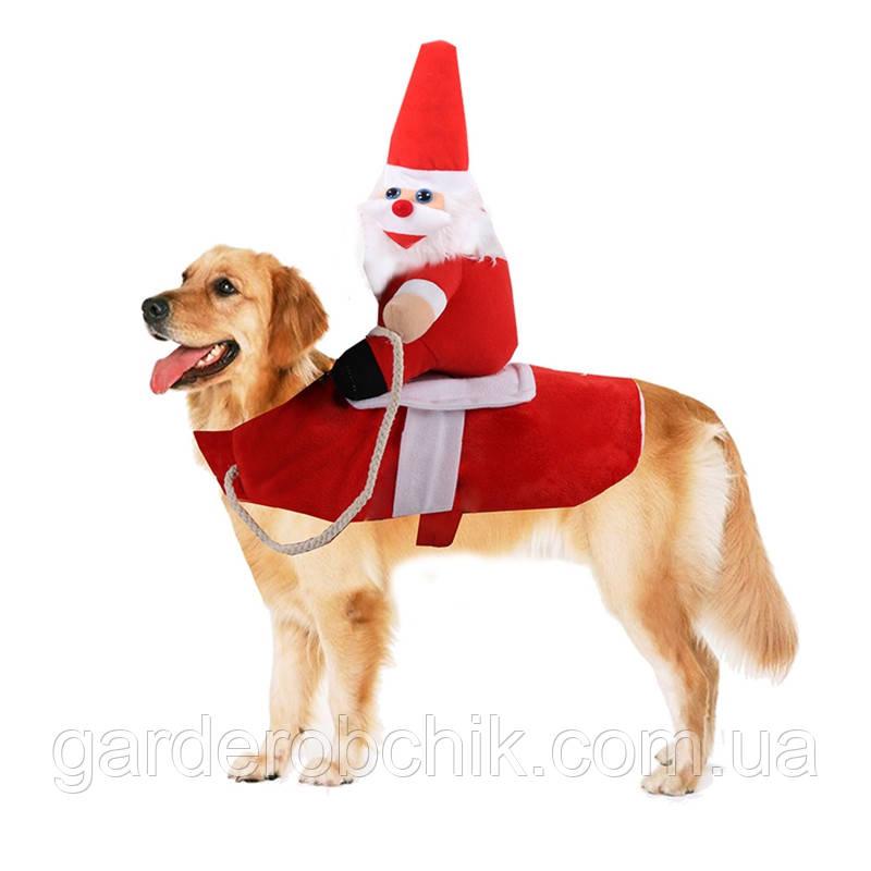 """Новогодний, карнавальный костюм """"САНТА НАЕЗДНИК"""" для собаки. Одежда для собак"""