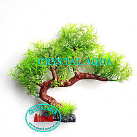 Растение Атман KA-080C