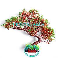 Растение Атман KA-152A