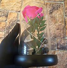 Подарунок дівчині! РОЗА в скляній колбі +Підсвічування (нічник) Рожева (справжні фото!), фото 3