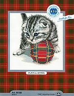 RTO Набор для вышивания Играющий котенок
