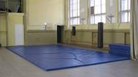 Покрышка пвх для борцовских ковров