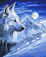 Картина по номерам 40x50 Волк под луной, Rainbow Art (GX8532), фото 1