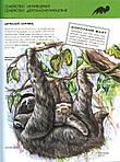 Животные. Полная энциклопедия, фото 3