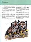 Животные. Полная энциклопедия, фото 4