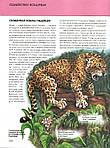 Животные. Полная энциклопедия, фото 5
