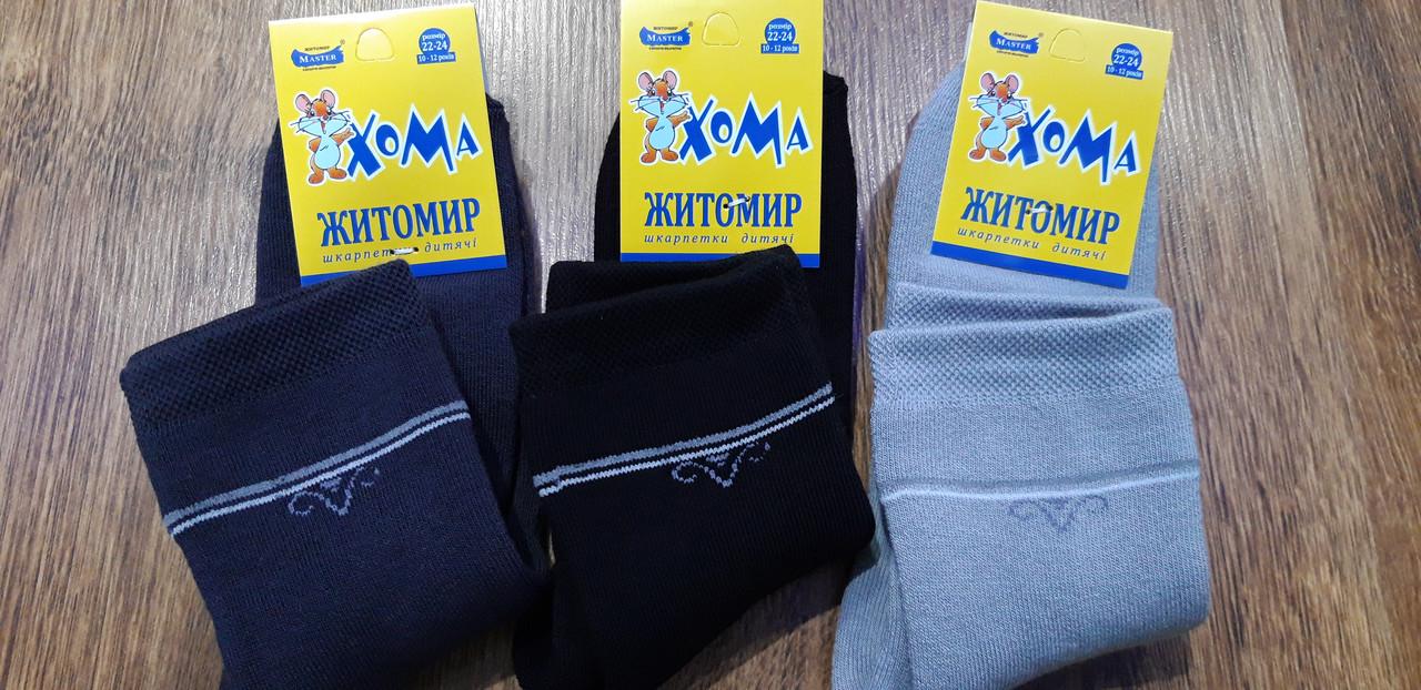 """Підліткові махрові шкарпетки""""ХОМА Master"""" Житомир,Лілія 22-24(10-12 років)"""