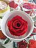Стабилизированный бутон роза в футляре Lerosh - Standart,  Фиолетовый, фото 8