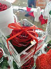 Стабилизированный бутон роза в коробке Lerosh - Premium, Красный