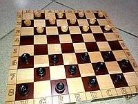 Деревянные Шашки и нарды 2 в 1 (310х310х18 мм), фото 1