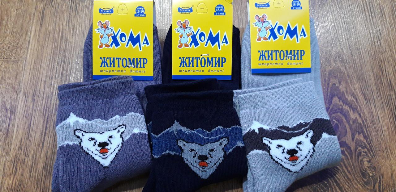 """Дитячі махрові шкарпетки""""ХОМА Master"""" Житомир,Ведмідь 18-20(5-7 років)"""