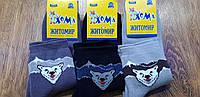 """Дитячі махрові шкарпетки""""ХОМА Master"""" Житомир,Ведмідь 18-20(5-7 років), фото 1"""
