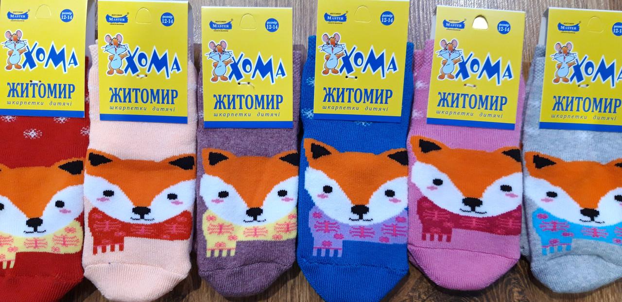 """Дитячі махрові шкарпетки""""ХОМА Master"""" Житомир,Лисичка 12-14(1-2 роки)"""