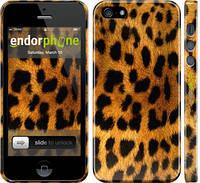 """Чехол на iPhone 5s Шкура леопарда """"238c-21"""""""