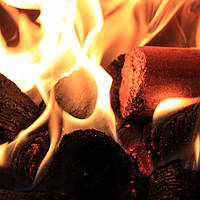 Топливные брикеты - удобные и эффективные дрова на все случаи жизни