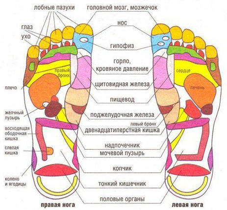 Массажные тапочки Massage Slipper JR-309A, размер S, фото 2